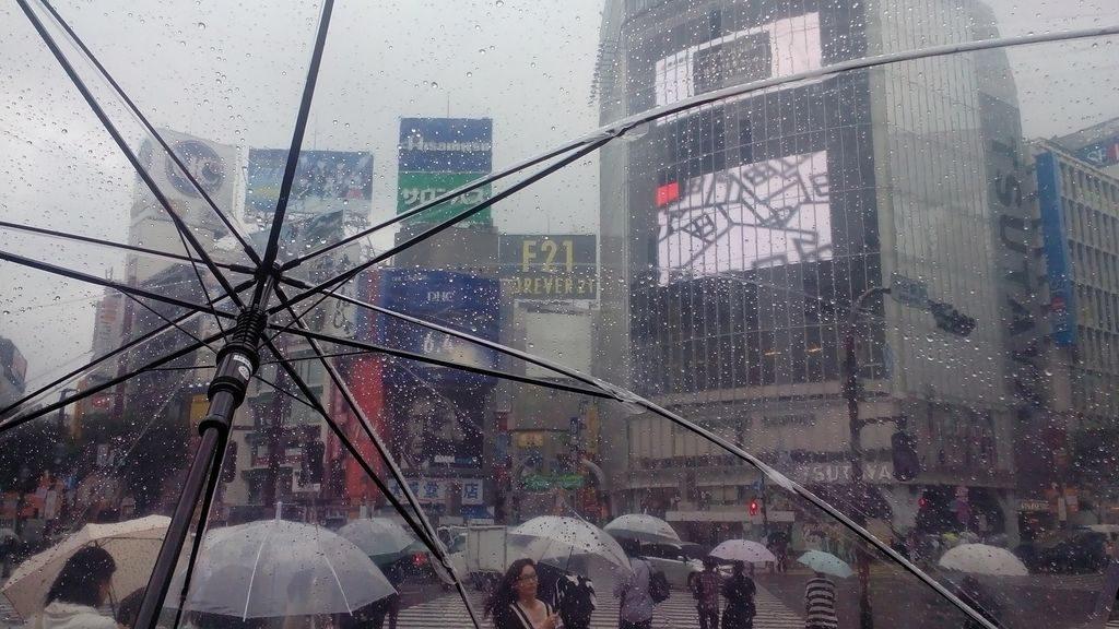 Parapluie maison 2
